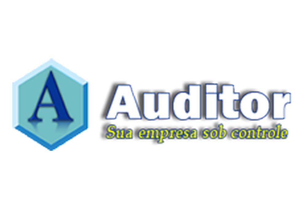 Auditor Sistemas e Representações